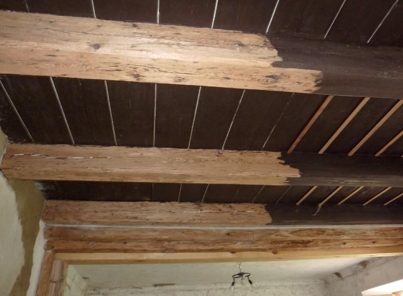 Побелить потолок водоэмульсионной краской можно примерно так - процесс в разгаре - otdelat.ru