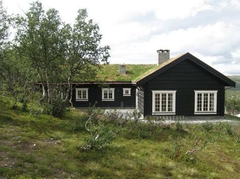Деревянные дома сегодня возводятся повсеместно - otdelat.ru